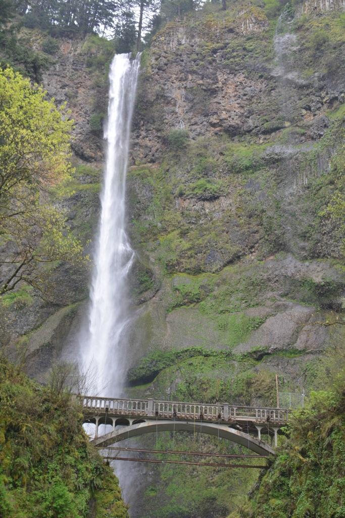 Multnomah Falls Image