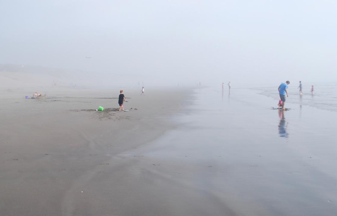 Foggy shore in the Oregon Coast