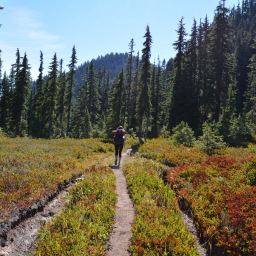 My 5 Most Beautiful Hikes in Washington